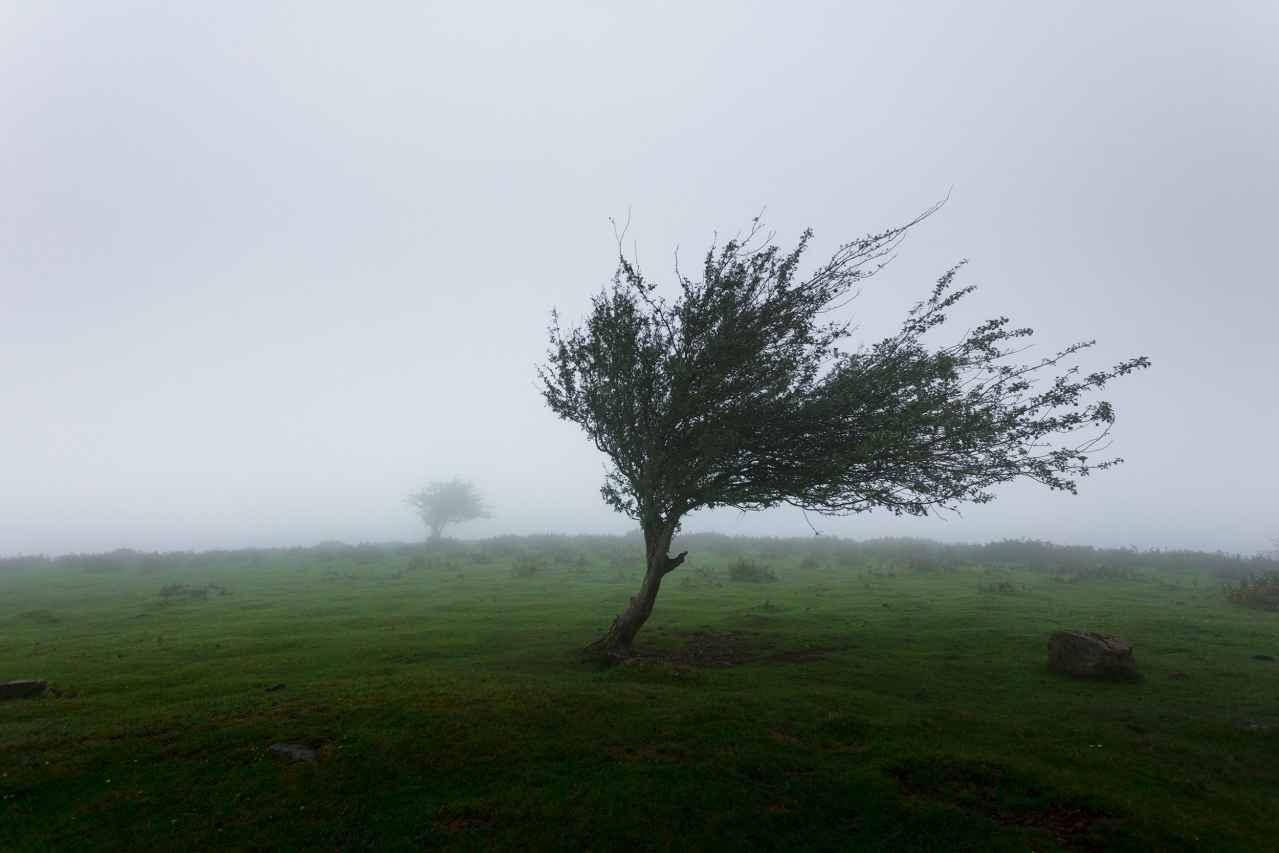 ロードバイクで向かい風が辛い原因